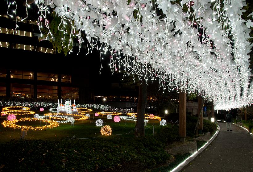 天満桜ノ宮「光のエレガンス」
